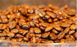 coffee beans light roasted